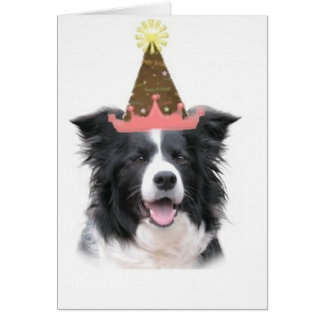 Ditzy Dogs~Original Notecard~Border Collie~B'day Card