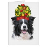 Ditzy Dogs~Original Notecard~Border Collie Cards