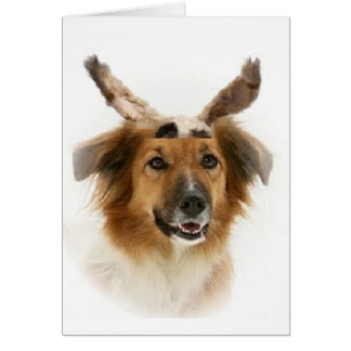 Ditzy Dogs~Original Notecard~Border Collie~Easter Card