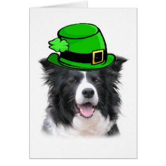 Ditzy Dogs~Original Notecard~Border Collie~St. Pat Card