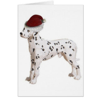Ditzy Dogs~Original Notecard~Dalmation Card