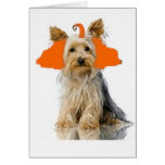 Ditzy Dogs~Original Notecard~Yorkie Cards