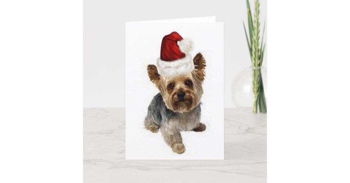 Ditzy Dogs~Original Notecard~Yorkie~Christmas Holiday Card | Zazzle.com