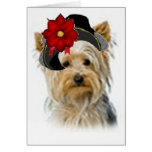 Ditzy Dogs~Original Notecard~Yorkie Greeting Cards