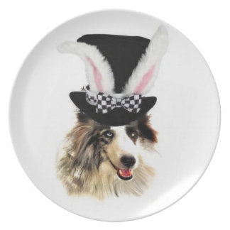 Ditzy Dogs~Original Plate~Border Collie~Easter Melamine Plate