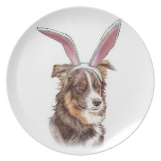 Ditzy Dogs~Original Pllate~Border Collie~Easter Dinner Plate