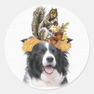 Ditzy Dogs~Original Sticker~Border Collie