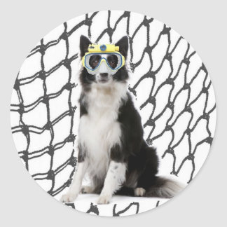 Ditzy Dogs~Original Sticker~Border Collie Classic Round Sticker