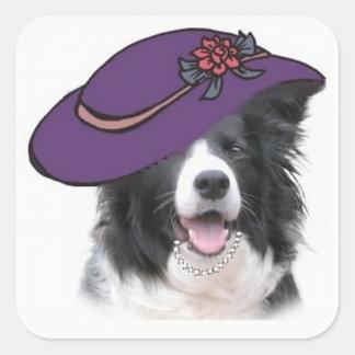 Ditzy Dogs~Original Sticker~Border Collie Square Sticker