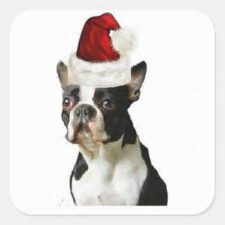 Ditzy Dogs~Original Sticker~Boston Terrier