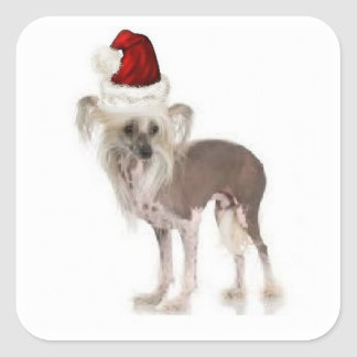 Ditzy Dogs~Original Sticker~Chinese Crested Square Sticker