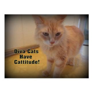 Diva cats postcard