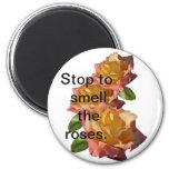 """Diva color de rosa """"parada para oler los rosas."""" imán redondo 5 cm"""