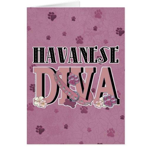 DIVA de Havanese