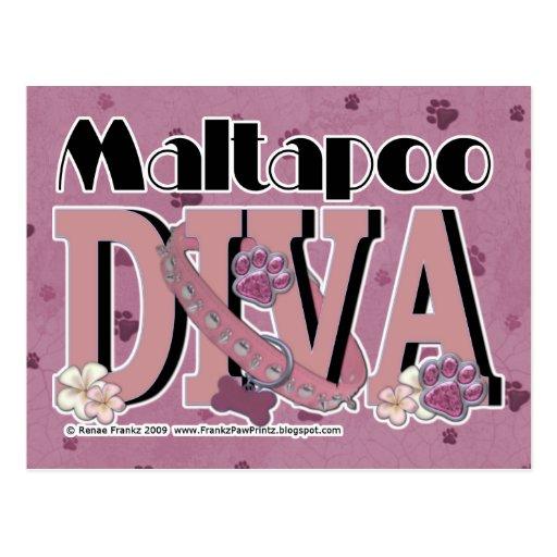 DIVA de MaltaPoo Tarjetas Postales
