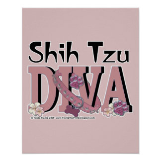 DIVA de Shih Tzu Póster
