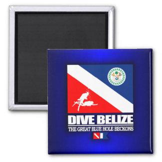 Dive Belize 2 Inch Square Magnet