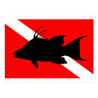 Dive Flag Hogfish Postcard