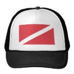 DIVE HATS
