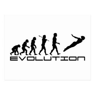 Dive High Diving Diver Sport Evolution Art Postcard