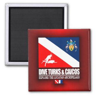 Dive Turks & Caicos 2 Inch Square Magnet