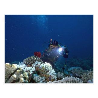 Diver shooting video on coral bed flyer design