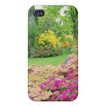 Diversas azaleas rosadas en el jardín del flowe de iPhone 4 cárcasa