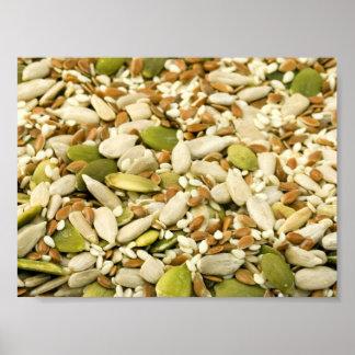 Diversas semillas comestibles póster