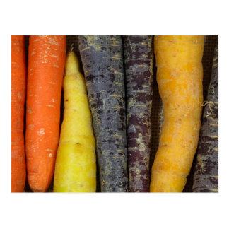 Diversas zanahorias coloreadas postales