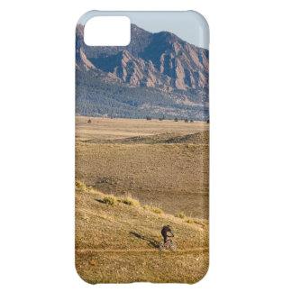 Diversión Biking de la montaña de Colorado Funda Para iPhone 5C