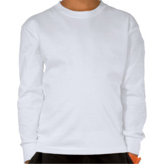 Diversión colorida de la camisa de manga larga del