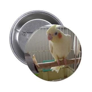 Diversión del Cockatiel Pin