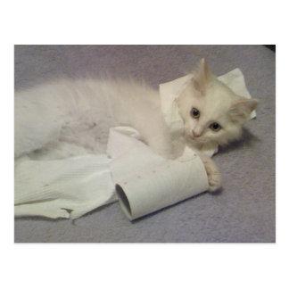 diversión del papel higiénico postal