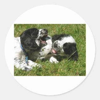 Diversión del perro de aguas pegatina redonda
