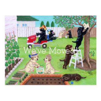 Diversión Labradors de domingo que pinta la nueva Postal