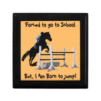 Diversión llevada para saltar al Equestrian Caja De Recuerdo