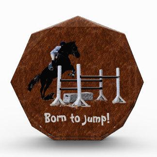Diversión llevada para saltar al Equestrian