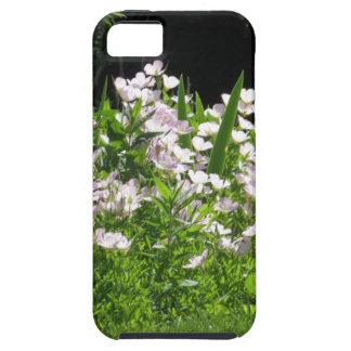 DIVERSIÓN NVN670 de los regalos de New Jersey iPhone 5 Protectores