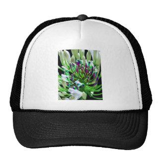Diversión romántica verde floral de los regalos de gorras