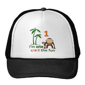 Diversión una del mono gorras