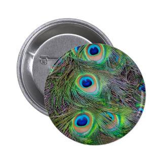 Diversión y diseño fresco de la pluma del pavo rea pin redondo de 2 pulgadas