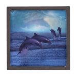 Diversión y juego de los delfínes caja de recuerdo de calidad