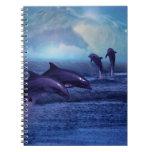Diversión y juego de los delfínes libro de apuntes
