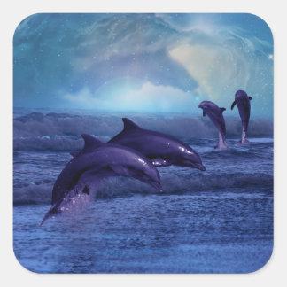 Diversión y juego del delfín calcomanía cuadradas