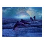Diversión y juego del delfín postal