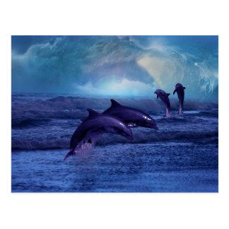 Diversión y juego del delfín tarjetas postales