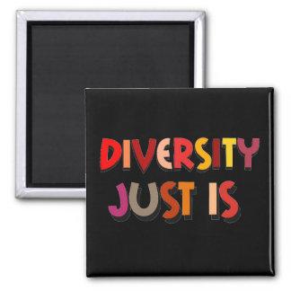 Diversity Just Is Magnet