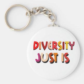 Diversity Just Is (White) Keychain