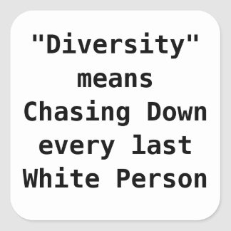 Diversity means Chasing Down the last White person Square Sticker