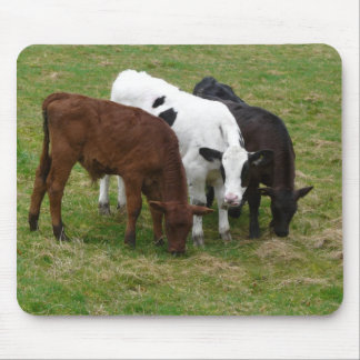 Diversity - Multicolored Cattle Mouse Pad